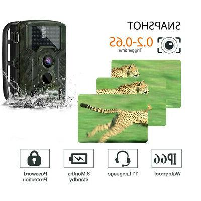 16MP IP66 Waterproof Outdoor Cam with Led Vision