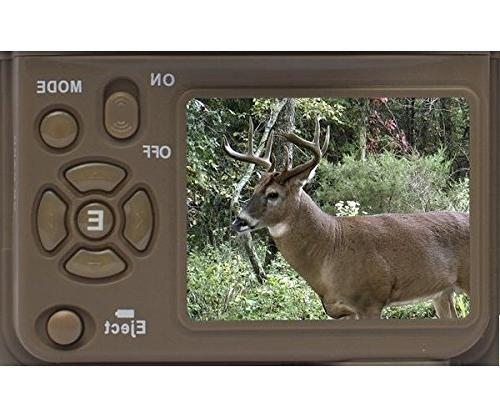 Browning Recon 20MP + 16GB SD + Focus