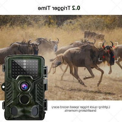 Game Cam No Vision IP66 UP