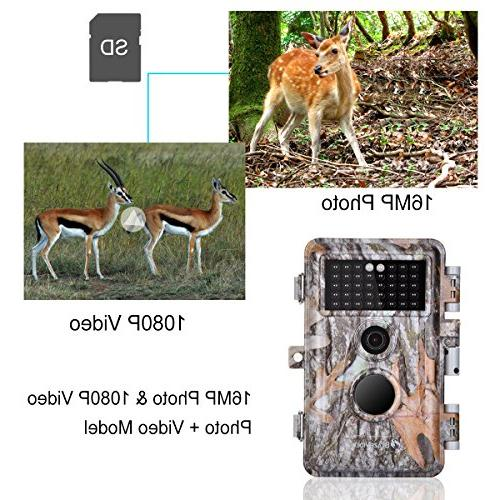 5-Pack Game Cameras Wildlife Deer Hunting Time Lapse 65ft Vision No IR Motion Activated Waterproof Trigger LCD