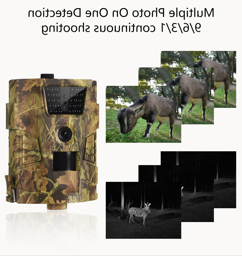 Wildlife Camera Hunting Game Cam Video Outdoor IR