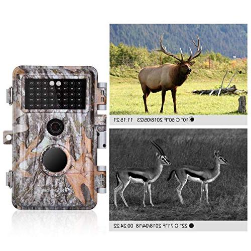 """BlazeVideo 2-Pack Deer 16MP Hunting Wildlife Vision Activated IP66 F2.0 Lens Trigger No Glow 2.4"""" LCD"""