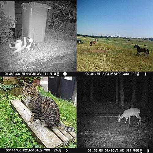 Victure Trail Night Camera with for Wildlife and Home