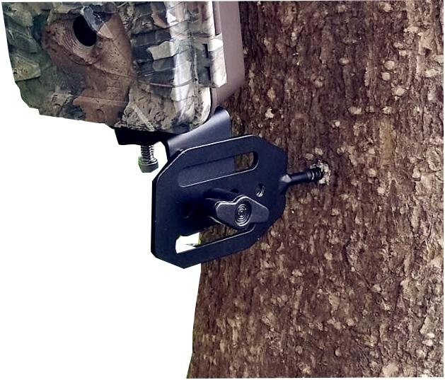 trail camera bungee mounting cord strap gear