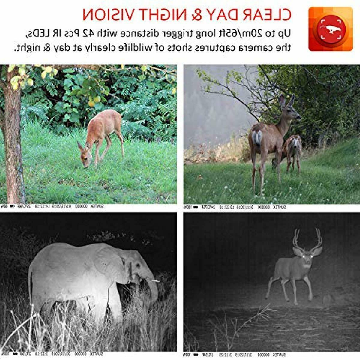 Trail Camera, Camera with Night Motion