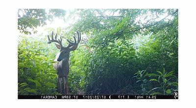 Browning Ops 14 MP Trail Camera