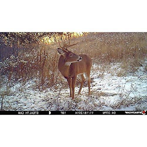 Stealth Cam 10MP No Trail Camera with +