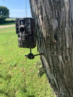 Trail Camera Tree Mount